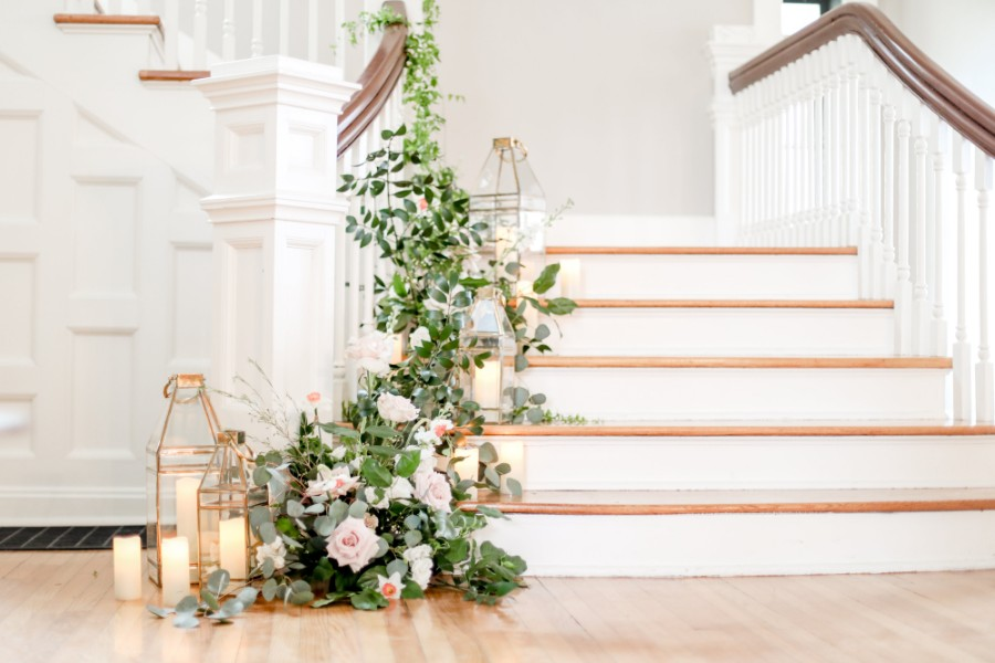 Winding greenery growing up staircase